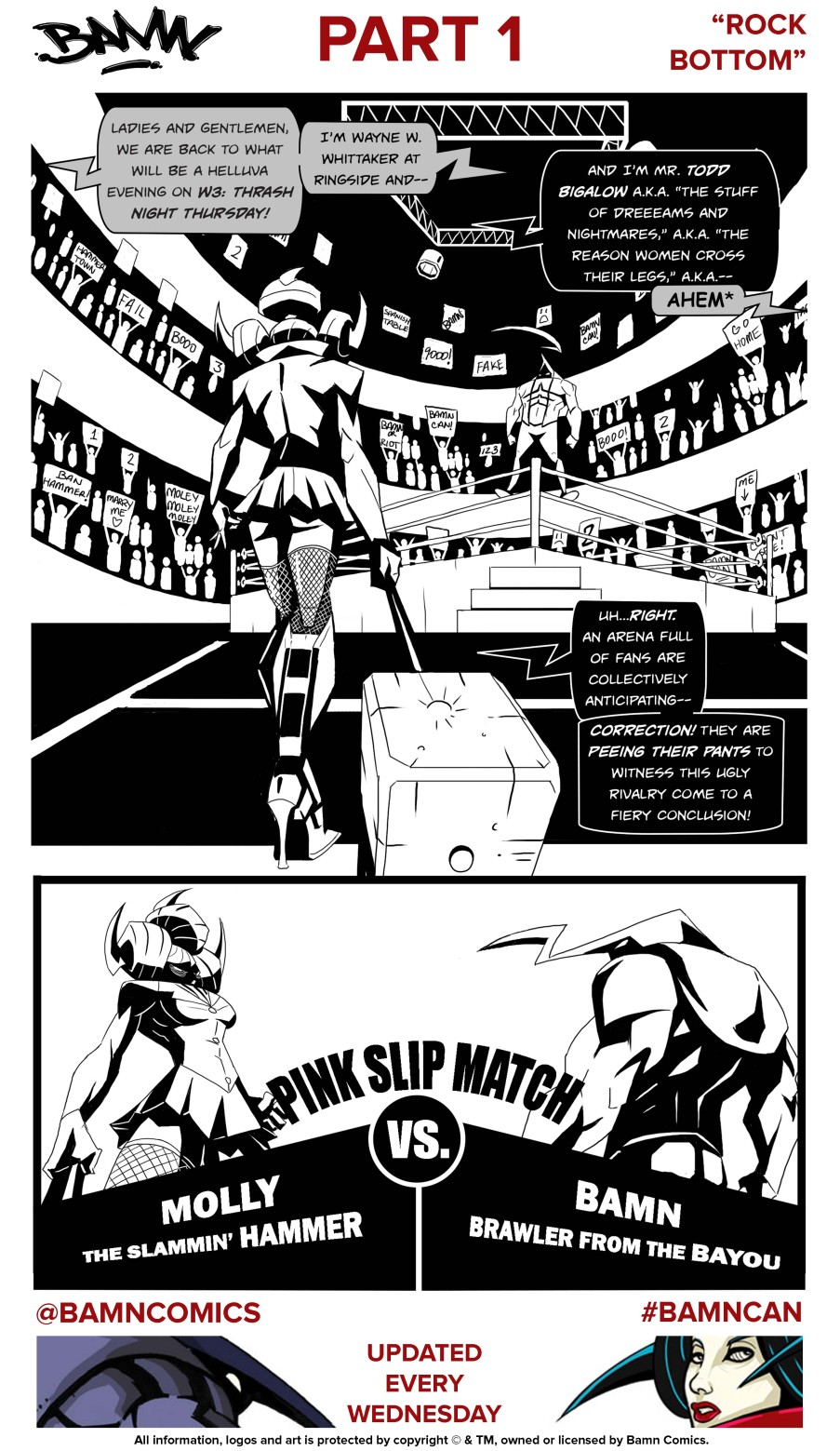 BAMN # 1 Page FINAL